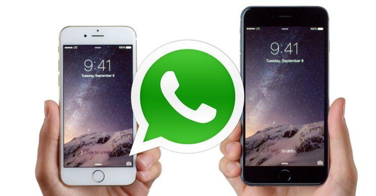 come_trasferire_whatsapp