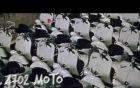 Youtube, Istituto Luce apre il canale con 30.000 video storici [VIDEO]