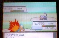 Pokemon Heart Gold e Soul Silver per Nintendo DS e DSI