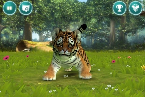 Kinectimals tigre