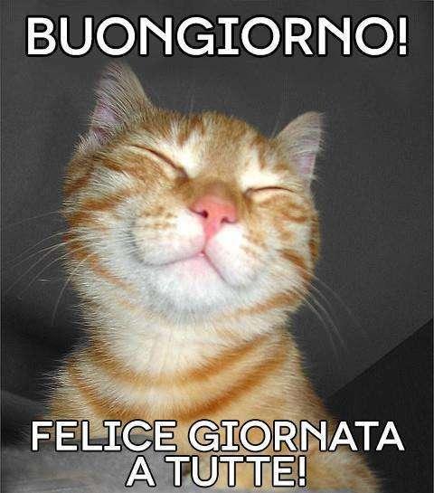 Eccezionale Immagini divertenti buongiorno per WhatsApp (Foto) | Tecnocino XV13