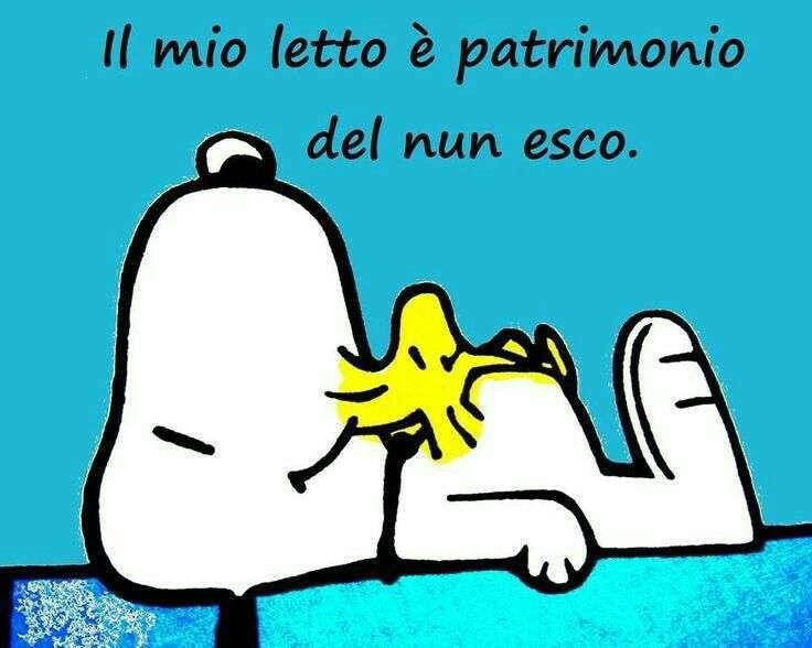 Immagini divertenti buonanotte per whatsapp foto tecnocino for Buonanotte cartoni