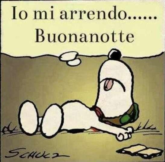 Top Immagini divertenti buonanotte per WhatsApp (Foto 3/11) | Tecnocino ER13