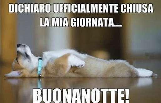 Immagini Divertenti Buonanotte Per Whatsapp Foto 8 11